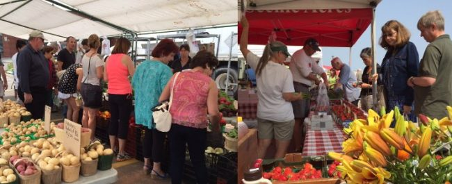 Fall Food Market Oakville Ontario